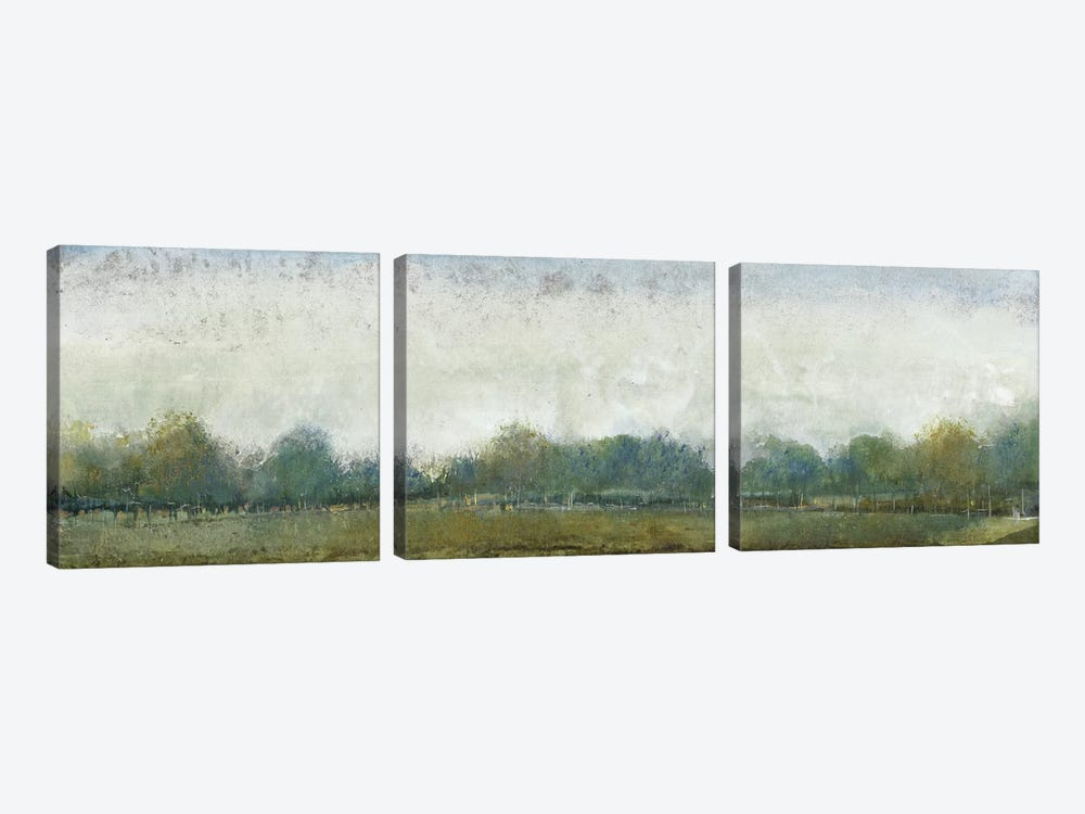 Ethereal Landscape II by Tim OToole 3-piece Canvas Art Print