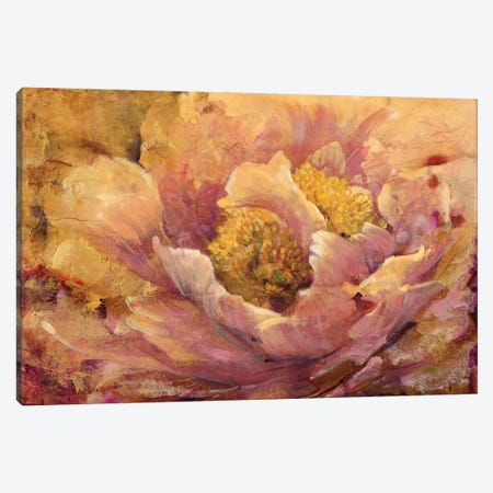 Floral In Bloom I Canvas Print #TOT94} by Tim OToole Canvas Art Print