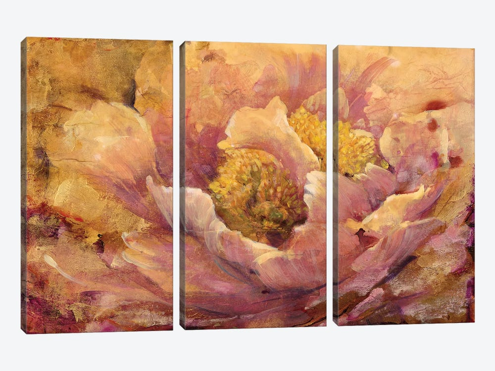 Floral In Bloom I by Tim OToole 3-piece Canvas Wall Art