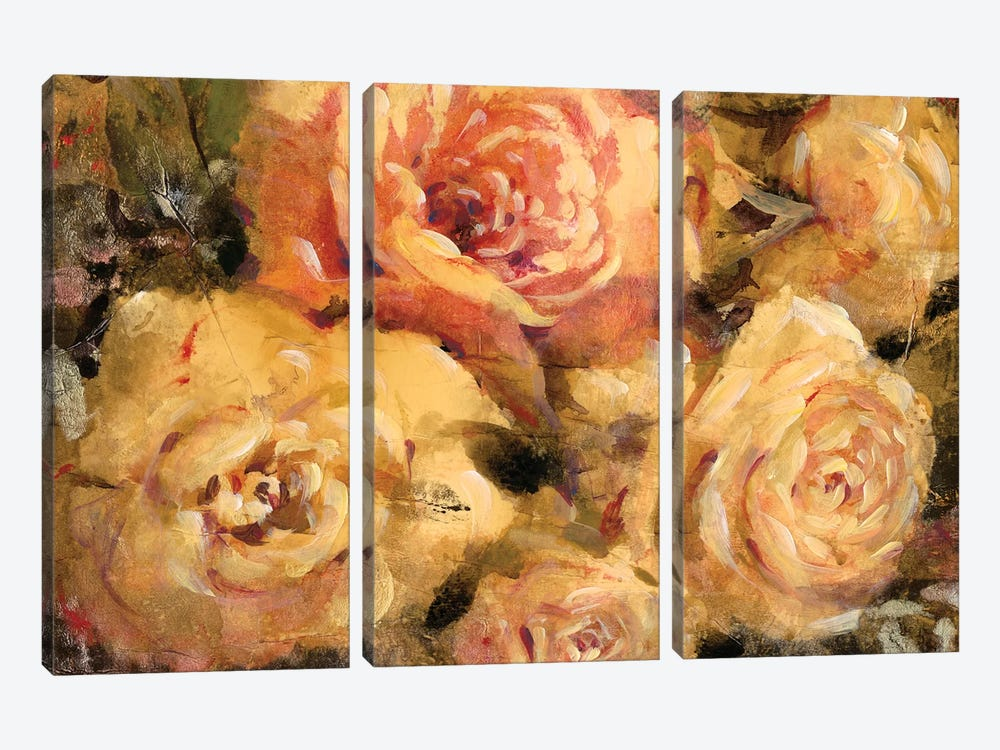 Floral In Bloom II by Tim O'Toole 3-piece Art Print