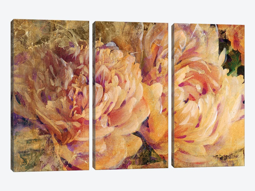Floral In Bloom III by Tim O'Toole 3-piece Canvas Art