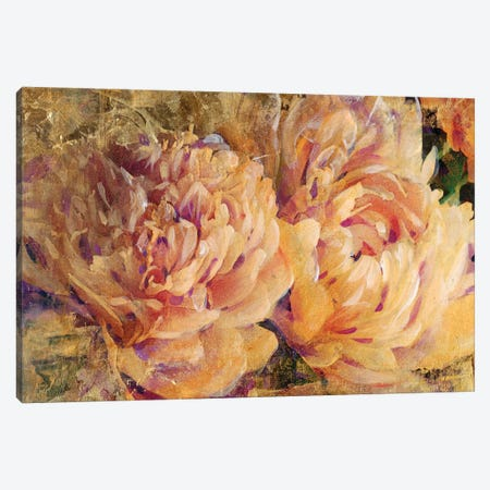 Floral In Bloom III Canvas Print #TOT96} by Tim OToole Canvas Print