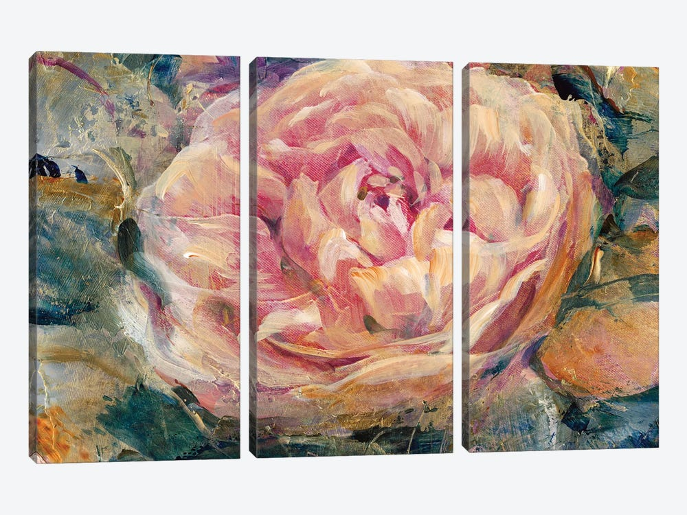 Floral In Bloom IV by Tim OToole 3-piece Art Print