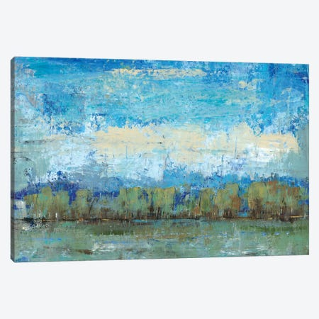 Forest Edge I Canvas Print #TOT98} by Tim OToole Canvas Artwork