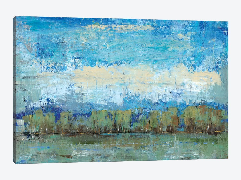 Forest Edge I by Tim OToole 1-piece Canvas Artwork