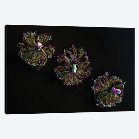 Waterlilies III Canvas Print #TPH48} by Trung Pham Canvas Art