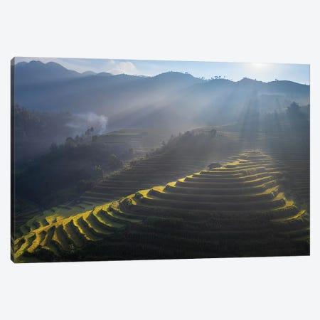 Rice Terrace In Mu Cang Chai Canvas Print #TPH50} by Trung Pham Canvas Print