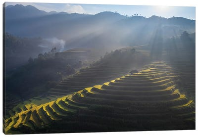 Rice Terrace In Mu Cang Chai Canvas Art Print