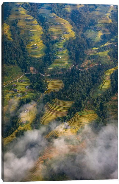 Rice Terrace 3 Canvas Art Print
