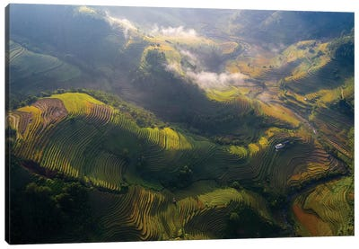 Rice Terrace In Sunshine Canvas Art Print