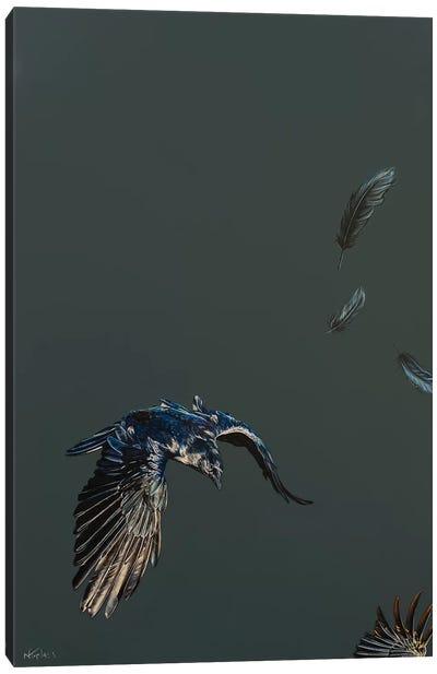 Morrigans Flight Canvas Art Print