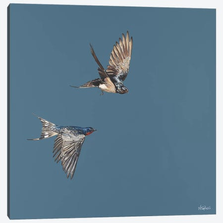 Soaring Canvas Print #TPL30} by Natalie Toplass Art Print
