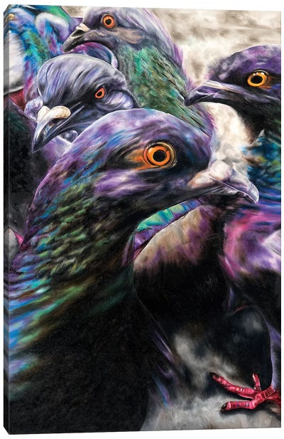 Wild Pigeons Canvas Art Print