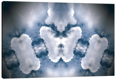 In the Clouds Canvas Art Print