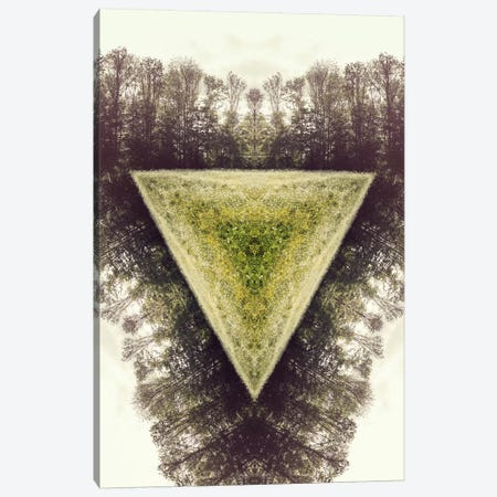 Field Canvas Print #TPS2} by 5by5collective Canvas Print