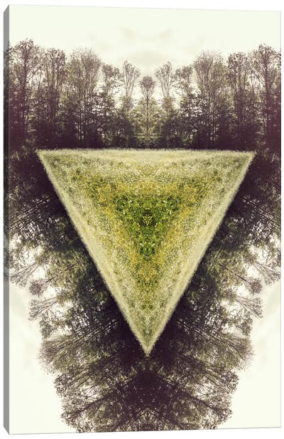 Field Canvas Art Print