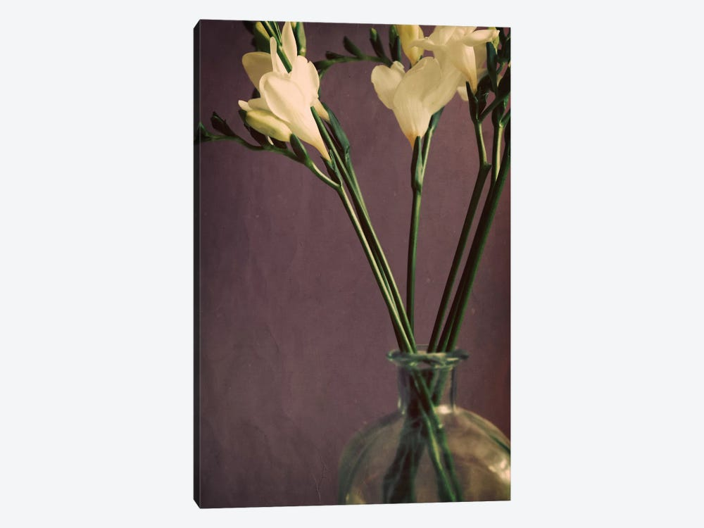 Flowers And Stems In A Bottle On Mauve by Tom Quartermaine 1-piece Canvas Art
