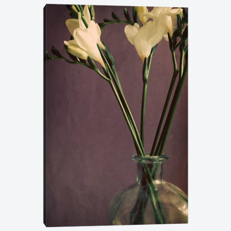 Flowers And Stems In A Bottle On Mauve 3-Piece Canvas #TQU107} by Tom Quartermaine Canvas Print
