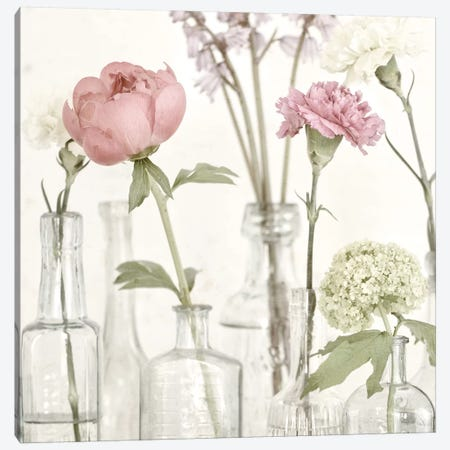 Flowers In Bottles Still Life 3-Piece Canvas #TQU108} by Tom Quartermaine Canvas Artwork