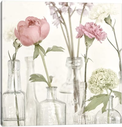 Flowers In Bottles Still Life Canvas Art Print