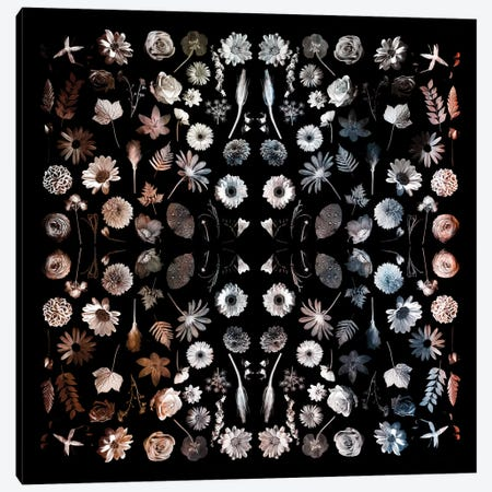 Gorgeous Mirror Of Florals On Black 3-Piece Canvas #TQU115} by Tom Quartermaine Canvas Wall Art