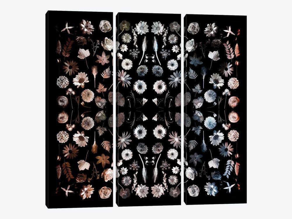 Gorgeous Mirror Of Florals On Black by Tom Quartermaine 3-piece Art Print