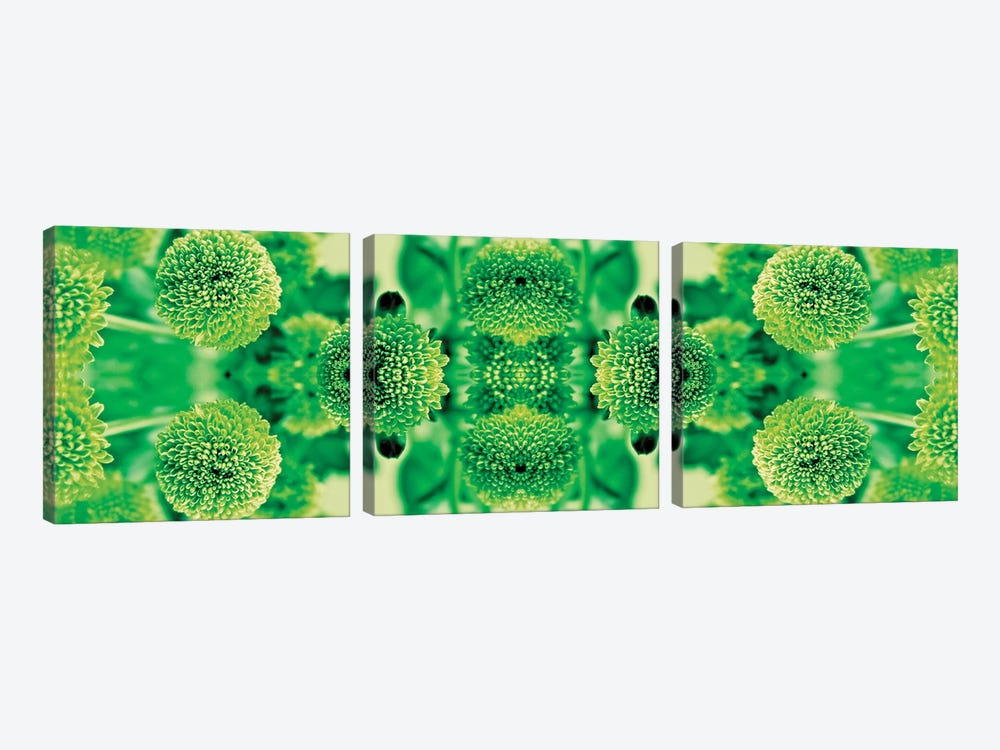 Green Flowers Kaleidoscope Effect by Tom Quartermaine 3-piece Canvas Print