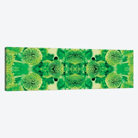 Green Flowers Kaleidoscope Effect 3-Piece Canvas #TQU120} by Tom Quartermaine Canvas Art