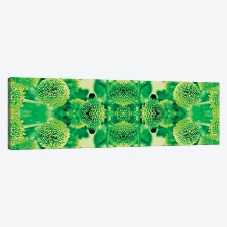 Green Flowers Kaleidoscope Effect Canvas Print #TQU120} by Tom Quartermaine Canvas Art