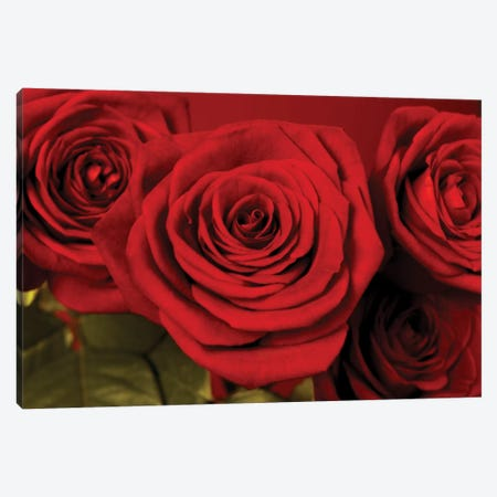 3 Red Roses Canvas Print #TQU12} by Tom Quartermaine Art Print