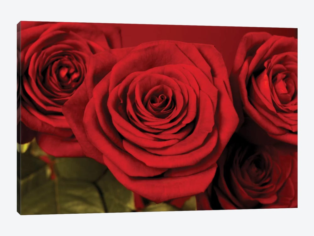 3 Red Roses by Tom Quartermaine 1-piece Canvas Art