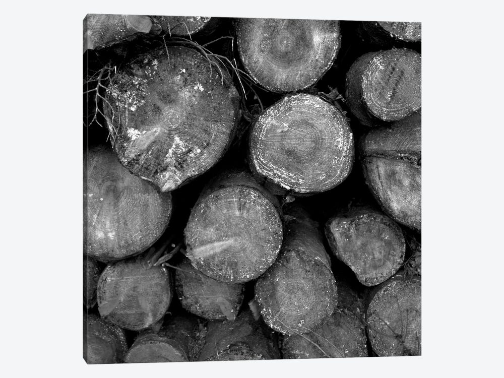 Logs B&W by Tom Quartermaine 1-piece Canvas Art Print