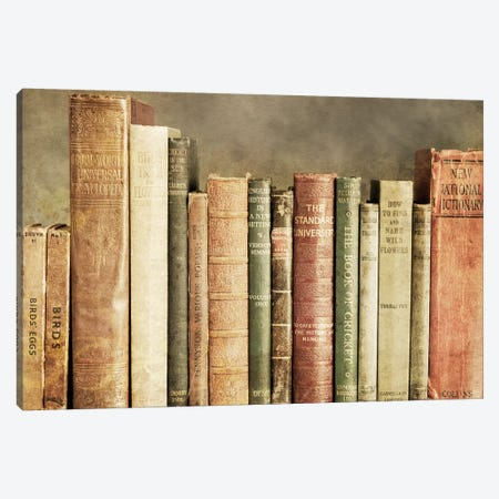 Old Books On A Shelf Canvas Print #TQU168} by Tom Quartermaine Canvas Wall Art