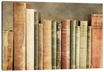 Old Books On A Shelf Canvas Art Print