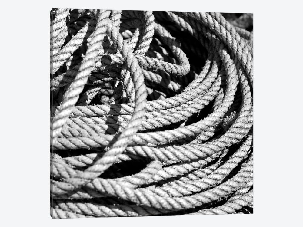Old Rope B&W by Tom Quartermaine 1-piece Canvas Art