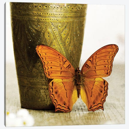 Orange Butterfly Against Copper Vase Canvas Print #TQU171} by Tom Quartermaine Canvas Art Print