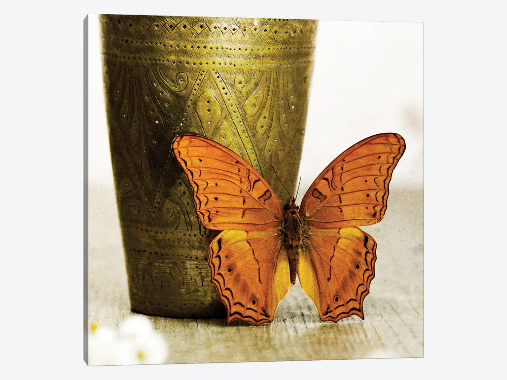Orange Butterfly Against Copper Vase by Tom Quartermaine 1-piece Art Print