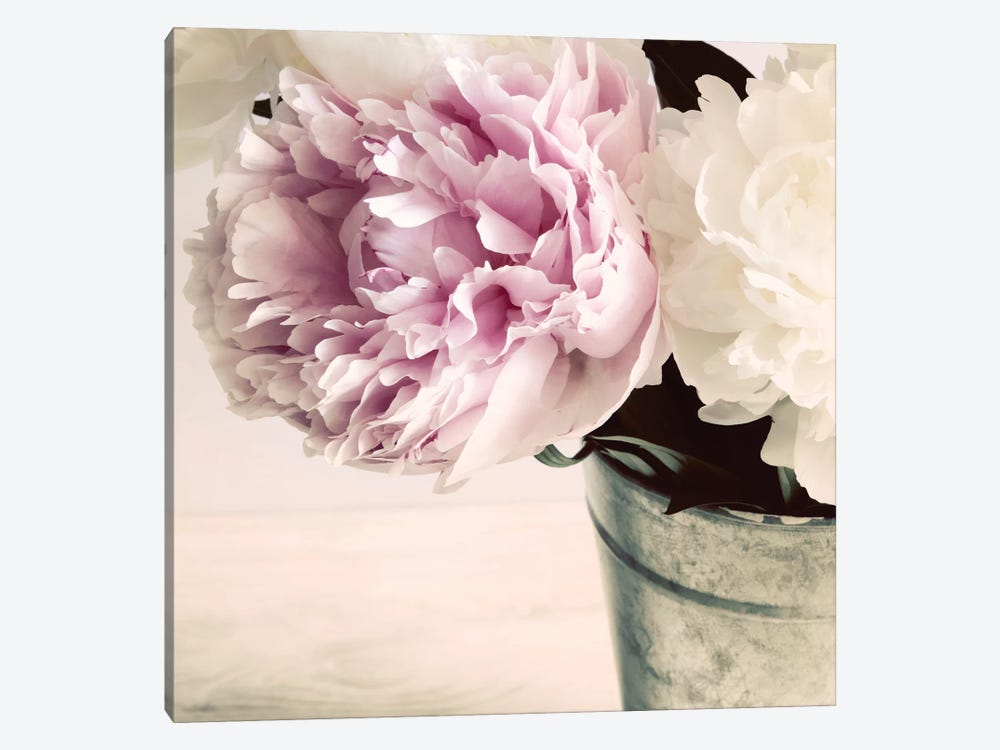 Pink And White Peonies In A Vase by Tom Quartermaine 1-piece Canvas Artwork