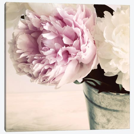 Pink And White Peonies In A Vase 3-Piece Canvas #TQU192} by Tom Quartermaine Canvas Print