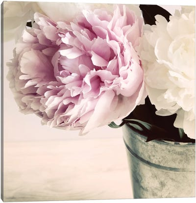 Pink And White Peonies In A Vase Canvas Art Print