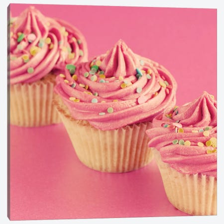 Pink Cakes On Pink II Canvas Print #TQU196} by Tom Quartermaine Canvas Artwork