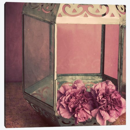 Pink Carnations In A Lantern Canvas Print #TQU197} by Tom Quartermaine Canvas Wall Art