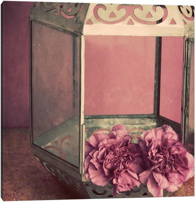 Pink Carnations In A Lantern Canvas Art Print