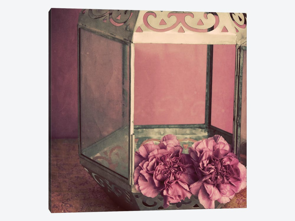 Pink Carnations In A Lantern by Tom Quartermaine 1-piece Art Print