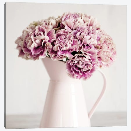 Pink Carnations In A Pink Jug Canvas Print #TQU198} by Tom Quartermaine Canvas Art Print