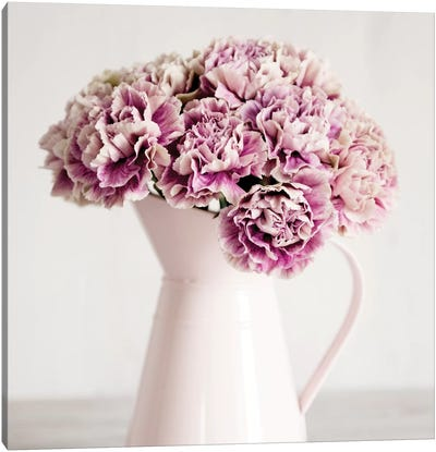 Pink Carnations In A Pink Jug Canvas Art Print