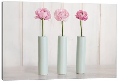 Row Of 3 Pink Flowers In Blue Vases Canvas Art Print