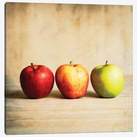 Row Of Antique Fruit 3-Piece Canvas #TQU273} by Tom Quartermaine Canvas Artwork