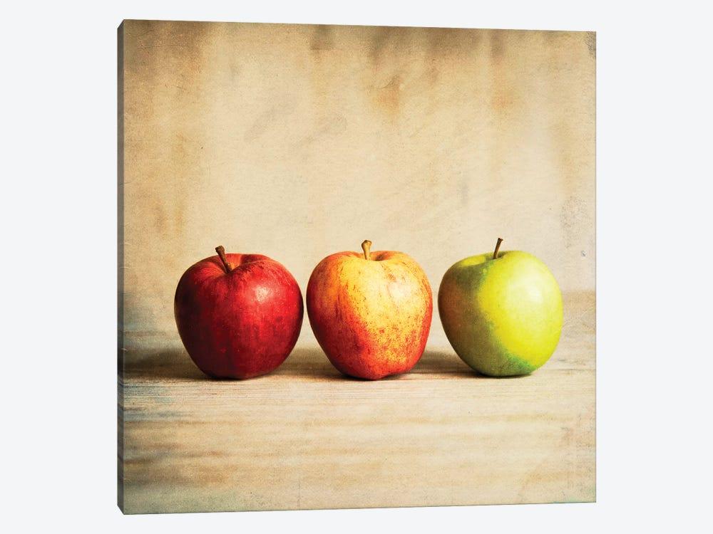 Row Of Antique Fruit by Tom Quartermaine 1-piece Art Print