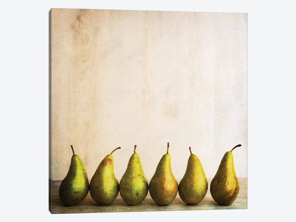 Row Of Antique Pears by Tom Quartermaine 1-piece Art Print